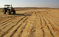 PikiWiki Israel 5995 modern desert agriculture.jpg