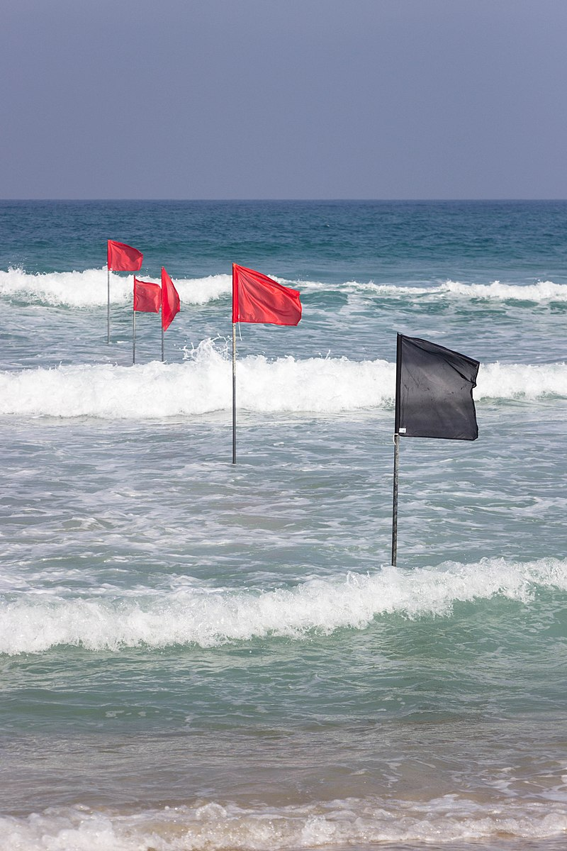 דגלים בחוף הים