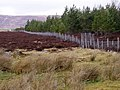 Plantation and Moorland near Dalrachney Beag - geograph.org.uk - 778579.jpg