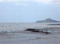 Pointe Saziley et îlot de sable blanc.jpg
