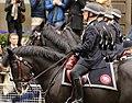 Police Horses (8657840027).jpg