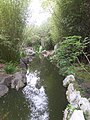 Pond CG 1.jpg