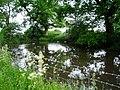 Pond at Lane End Farm - geograph.org.uk - 182207.jpg