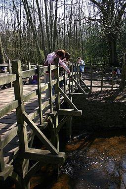 Poohsticks Bridge in Ashdown Forest, an area of common land. Pooh sticks bridge.jpg
