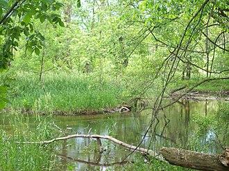 Prairie River (Michigan) - Image: Prairie River, Michigan