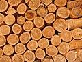 Precision Piled Wood - panoramio.jpg