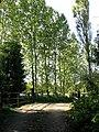 Private bridge near Yarrow House - view SW - geograph.org.uk - 574645.jpg