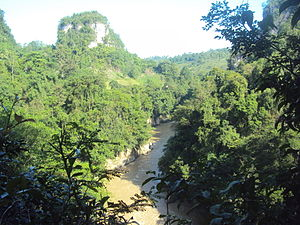Pulangi River in San Jose, Quezon.JPG
