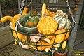 Pumpkin basket (SG) (16034684917).jpg