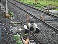 Pune railway view (2).JPG