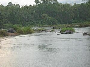 Thiruvambady - Iruvanjippuzha