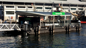 Pyrmont Bay ferry wharf - View from Cape Bowling Green Light in March 2017