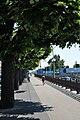 Quai du Mont-Blanc, Geneva - panoramio.jpg