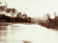 Queensland State Archives 2486 Marshs Dairy with aerial tramway Brisbane River c 1898.png