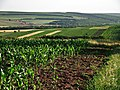 R23, Moldova - panoramio (16).jpg