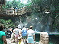 Rainforest exhibit - Aquarium of the Americas July 2007.jpg