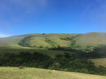 Rainforest range of Obudu Mountains Rainforest range of Obudu Mountains.jpg