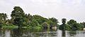 Ranganathittu Bird Sanctuary 13.jpg