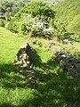 Remains of walled footpath, Barkisland - geograph.org.uk - 182472.jpg