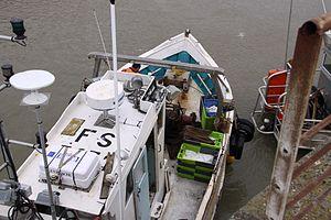 Retour de la pêche du chalutier L' Entracte II (2).JPG