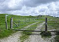 Ridgeway to Corfe Castle - geograph.org.uk - 1523328.jpg