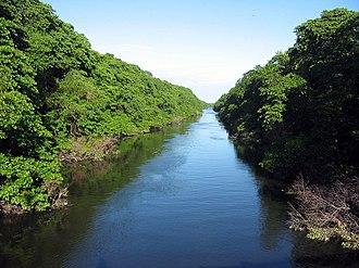 Ceará - Cocó River.