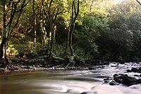 Rio Mandeo por Chelo.jpg