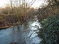 River Crane - geograph.org.uk - 104088.jpg