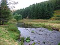 River Devon - geograph.org.uk - 63896.jpg