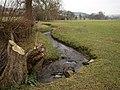 River Kemp near Colebatch - geograph.org.uk - 1111848.jpg