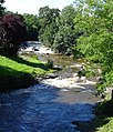 River Rhiw, Berriew - geograph.org.uk - 504203.jpg