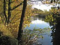River Ure - geograph.org.uk - 274596.jpg
