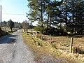 Road at Corraine - geograph.org.uk - 1749285.jpg