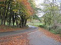 Road junction in autumn close to Meifod - geograph.org.uk - 1558186.jpg