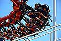Roller coaster -dw.jpg