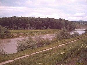 Siret (river) - Siret river near Roman.