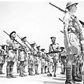Royal Engineers, Haifa חיל הנדסה, חיפה-ZKlugerPhotos-00132iv-0907170685126fbd.jpg