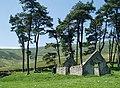 Ruined cottage at Glenshiel Banks - geograph.org.uk - 185833.jpg