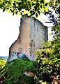 Ruines du Ramstein,,vues du bord extérieur du fossé défensif.jpg