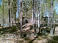 Ruins in forest - panoramio.jpg