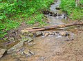 Ruisseau des Palanges (1).jpg