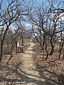 Rupp Hill Conservation Area. Education trail. Between Station 3 and 4. - Budapest.JPG