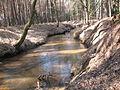 Rzeka Bziniczka.jpg