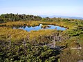 Saddleback Mountain Pond.jpg