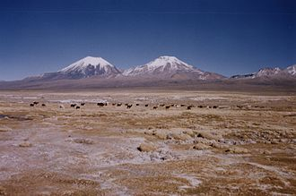 Altiplano - Volcanoes in Sajama National Park (Parinacota and Pomerape)