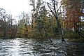 Salmon river high water - panoramio.jpg