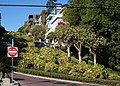 San Francisco 2016.- Lombard Street (2).jpg
