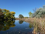 Santa Fe Botanical Garden pond.jpg