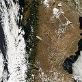 Sargentina amo 2008058 lrg.jpg