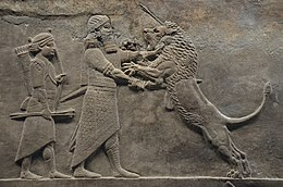 Sculpted reliefs depicting Ashurbanipal, the last great Assyrian king, hunting lions, gypsum hall relief from the North Palace of Nineveh (Irak), c. 645-635 BC, British Museum (16722368932).jpg